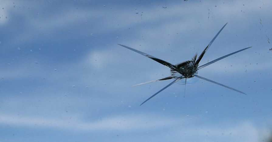 Windshield Rock Chip Repair Specialists